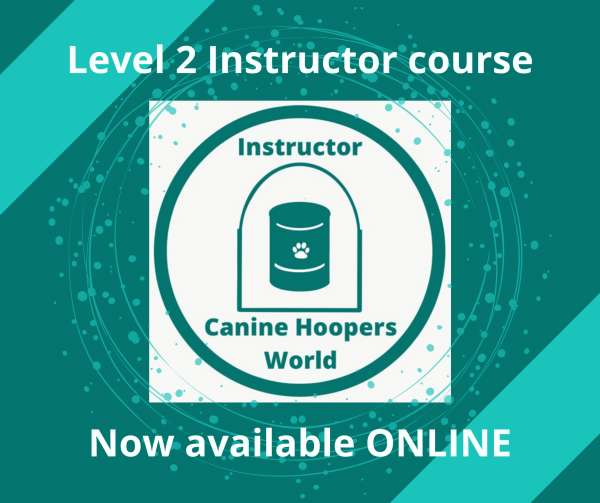 Level 2 instructors course online